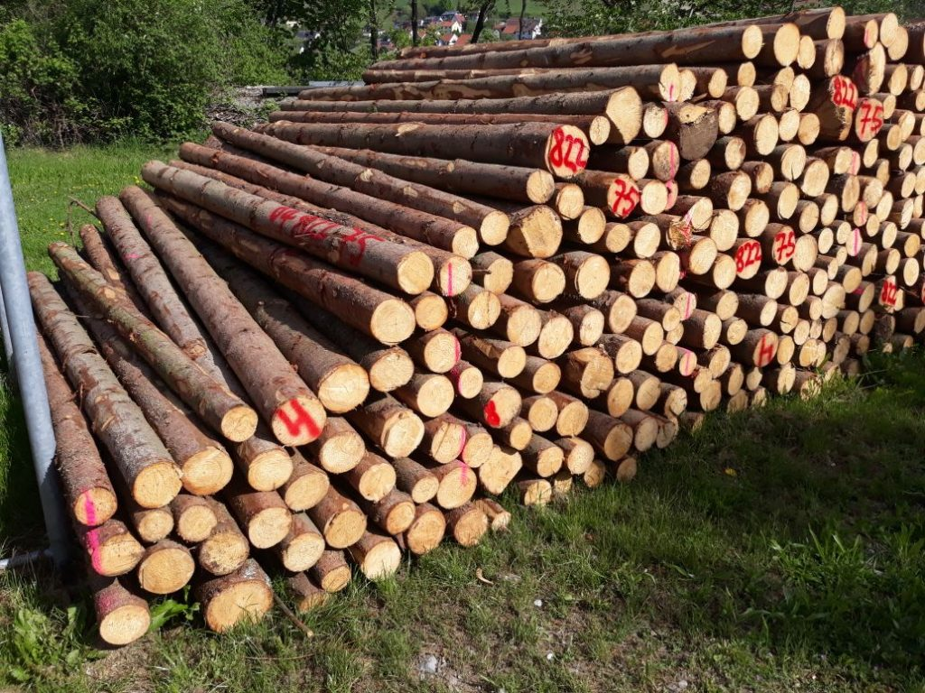 Rundholz aus regionaler Forstwirtschaft